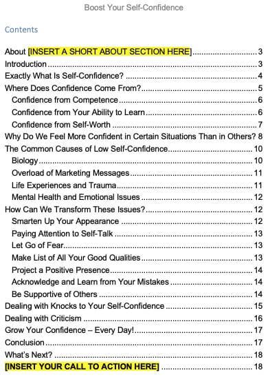 Self-Confidence-PLR-Report-Contents