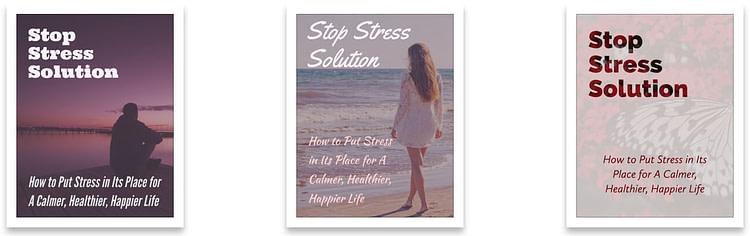 Stress-PLR-Report-1-covers