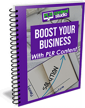 plr content to boost business guide cover