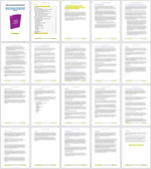 Successful-Entrepreneur-PLR-ebook-screenshot