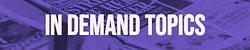 in-demand-topics-plr-logo