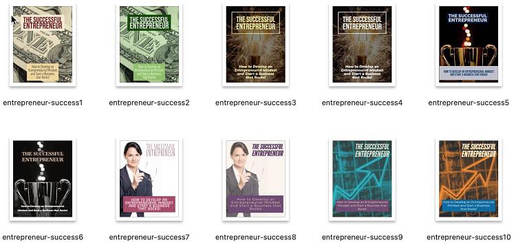Successful-Entrepreneur-PLR-graphics