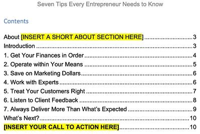 Successful-Entrepreneur-PLR-7-tips-contents